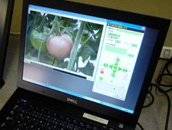 管理PC上のネットワークカメラ画像