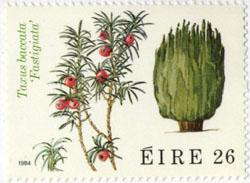 アイルランドの切手(1984) にも使われたセイヨウイチイ